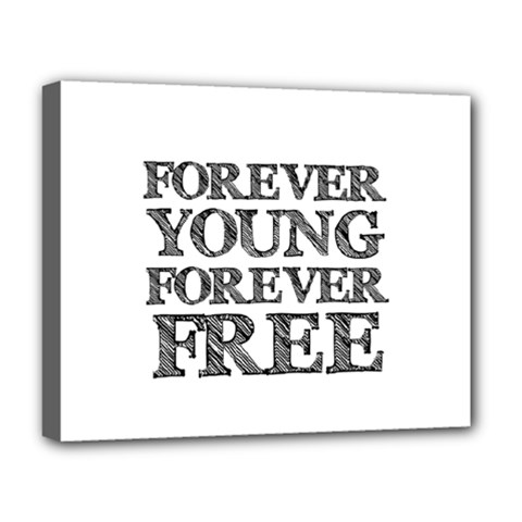 Forever Young Deluxe Canvas 20  X 16  (framed)