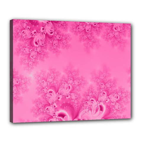 Soft Pink Frost Of Morning Fractal Canvas 20  X 16  (framed)