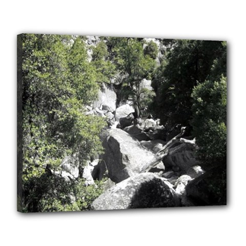 Yosemite National Park Canvas 20  X 16  (stretched)