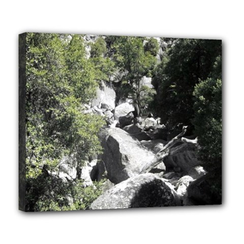 Yosemite National Park Deluxe Canvas 24  x 20  (Stretched)