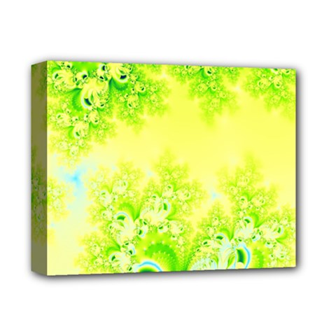 Sunny Spring Frost Fractal Deluxe Canvas 14  X 11  (framed)