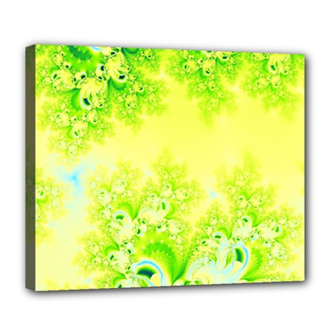 Sunny Spring Frost Fractal Deluxe Canvas 24  X 20  (framed)