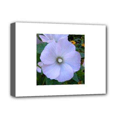 Moon Flower Deluxe Canvas 16  x 12  (Framed)