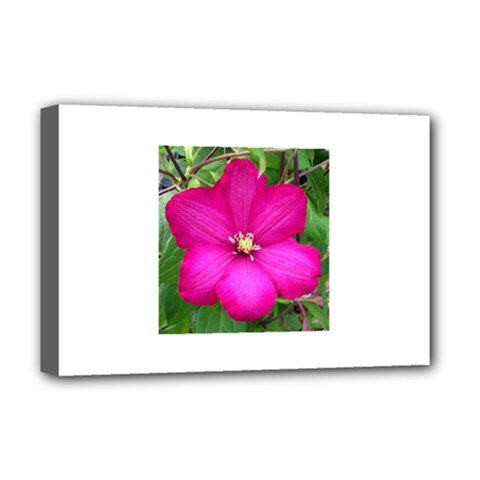 Clem Pink Deluxe Canvas 18  X 12  (framed)