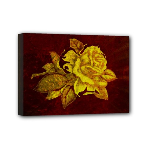 Rose Mini Canvas 7  x 5  (Framed)
