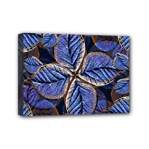 Fantasy Nature Pattern Print Mini Canvas 7  X 5  (framed)
