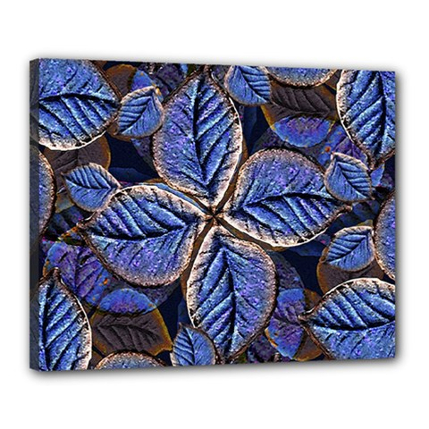 Fantasy Nature Pattern Print Canvas 20  x 16  (Framed)