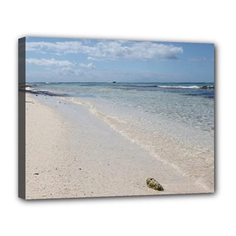 Seashell On Caribbean Beach Canvas 14  X 11  (framed)