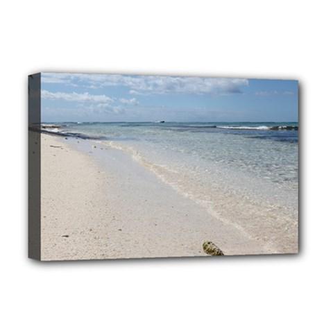 Seashell on Caribbean Beach Deluxe Canvas 18  x 12  (Framed)