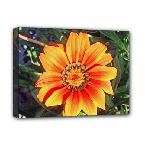 Flower In A Parking Lot Deluxe Canvas 16  x 12  (Framed)