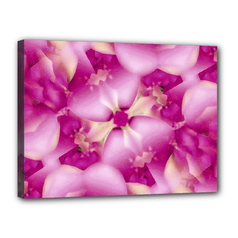 Beauty Pink Abstract Design Canvas 16  x 12  (Framed)