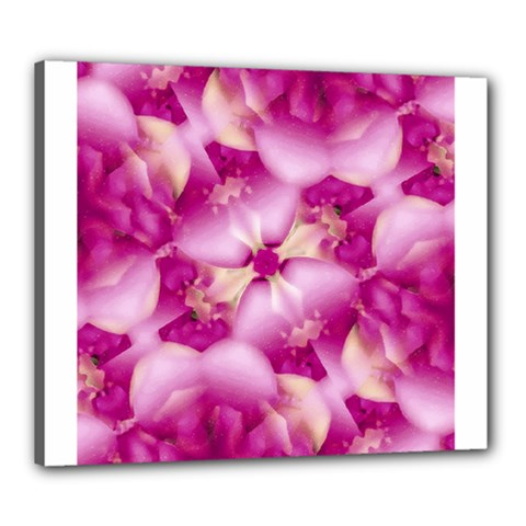 Beauty Pink Abstract Design Canvas 24  x 20  (Framed)