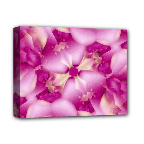 Beauty Pink Abstract Design Deluxe Canvas 14  X 11  (framed)