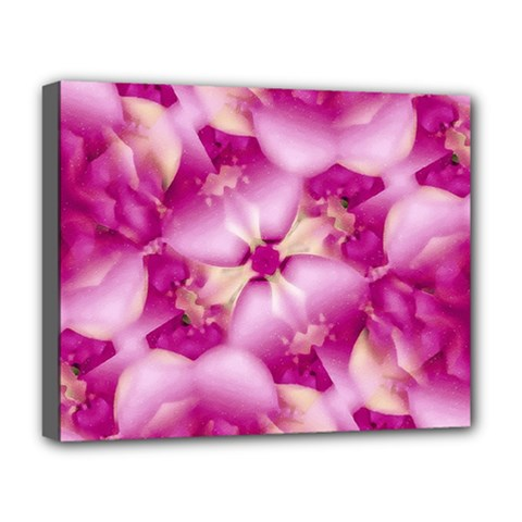 Beauty Pink Abstract Design Deluxe Canvas 20  x 16  (Framed)