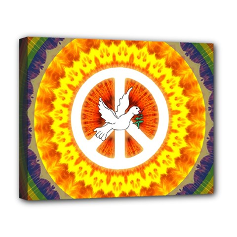 Psychedelic Peace Dove Mandala Deluxe Canvas 20  x 16  (Framed)