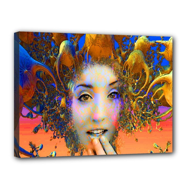 Organic Medusa Canvas 16  x 12  (Framed)