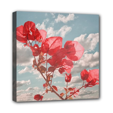 Flowers In The Sky Mini Canvas 8  X 8  (framed)