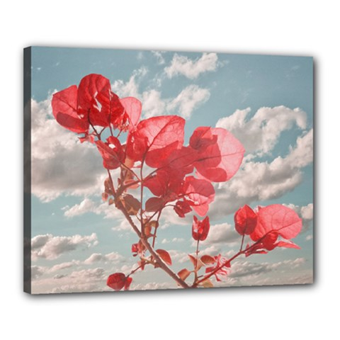 Flowers In The Sky Canvas 20  X 16  (framed)