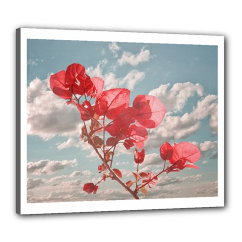 Flowers In The Sky Canvas 24  X 20  (framed)