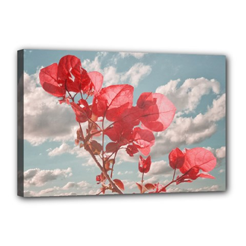 Flowers In The Sky Canvas 18  X 12  (framed)