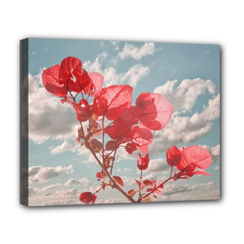 Flowers In The Sky Deluxe Canvas 20  x 16  (Framed)