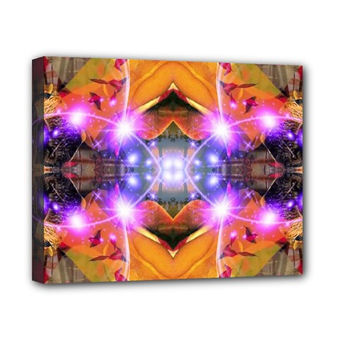 Abstract Flower Canvas 10  X 8  (framed)