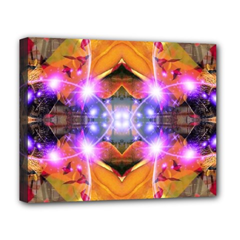 Abstract Flower Deluxe Canvas 20  X 16  (framed)