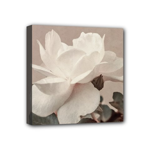 White Rose Vintage Style Photo In Ocher Colors Mini Canvas 4  X 4  (framed)