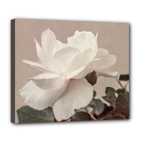 White Rose Vintage Style Photo In Ocher Colors Deluxe Canvas 24  X 20  (framed)