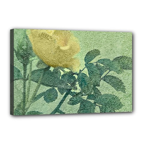 Yellow Rose Vintage Style  Canvas 18  X 12  (framed)