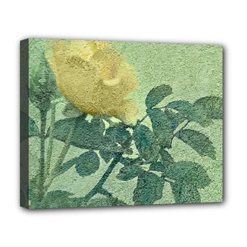 Yellow Rose Vintage Style  Deluxe Canvas 20  X 16  (framed)