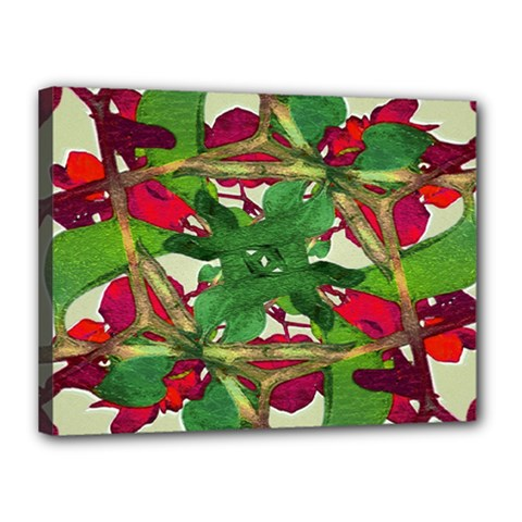 Floral Print Colorful Pattern Canvas 16  X 12  (framed)