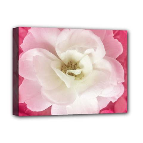 White Rose With Pink Leaves Around  Deluxe Canvas 16  X 12  (framed)