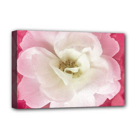 White Rose With Pink Leaves Around  Deluxe Canvas 18  X 12  (framed)