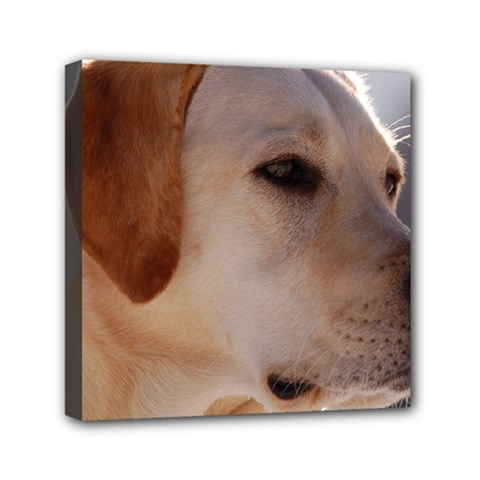 3 Labrador Retriever Mini Canvas 6  x 6  (Framed)