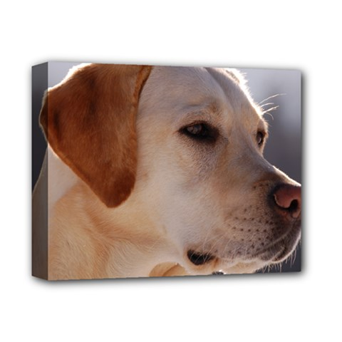 3 Labrador Retriever Deluxe Canvas 14  x 11  (Framed)
