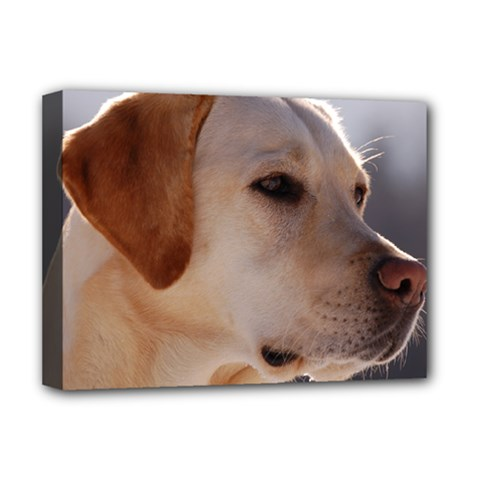 3 Labrador Retriever Deluxe Canvas 16  x 12  (Framed)