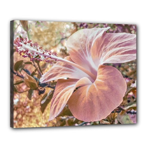 Fantasy Colors Hibiscus Flower Digital Photography Canvas 20  X 16  (framed)