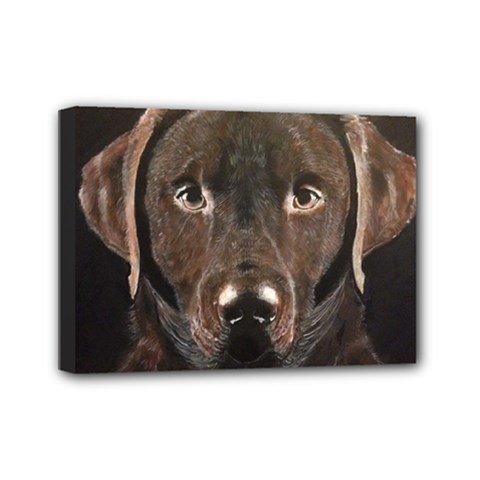 Chocolate Lab Mini Canvas 7  x 5  (Framed)