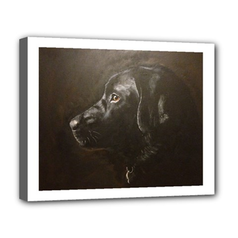 Black Lab Deluxe Canvas 20  X 16  (framed)