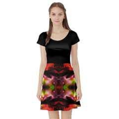 My Dream Come True By Saprillika Short Sleeved Skater Dress