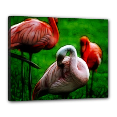 3pinkflamingos Canvas 20  X 16  (framed)