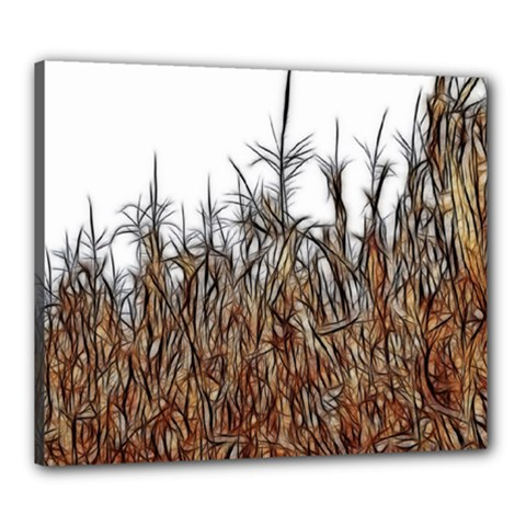 Abstract Of A Cornfield Canvas 24  X 20  (framed)