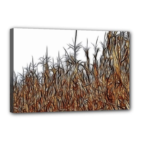 Abstract Of A Cornfield Canvas 18  X 12  (framed)
