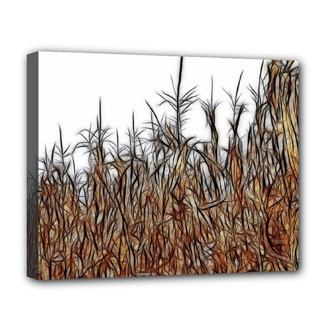 Abstract Of A Cornfield Deluxe Canvas 20  X 16  (framed)