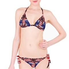 Modern Usa Flag Motif  Bikini