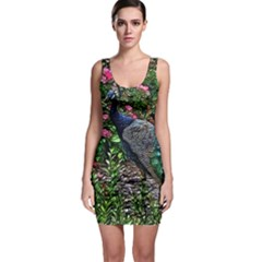 Peacock With Roses Bodycon Dress