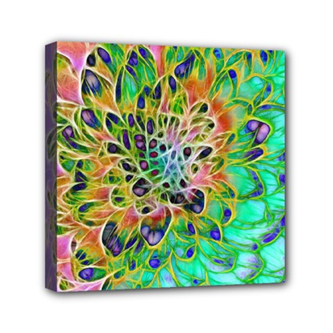Abstract Peacock Chrysanthemum Mini Canvas 6  X 6  (framed)