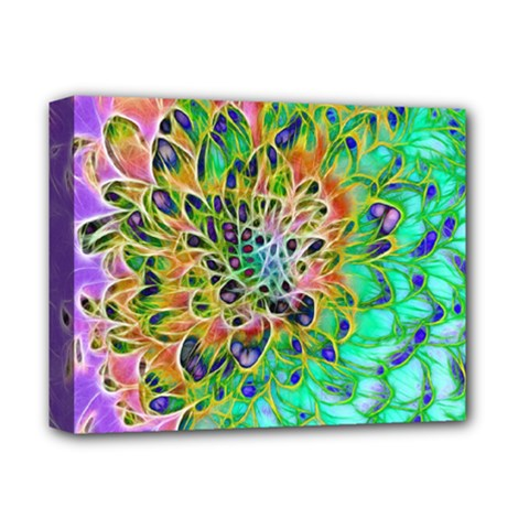 Abstract Peacock Chrysanthemum Deluxe Canvas 14  X 11  (framed)