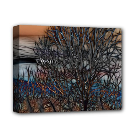 Abstract Sunset Tree Deluxe Canvas 14  x 11  (Framed)